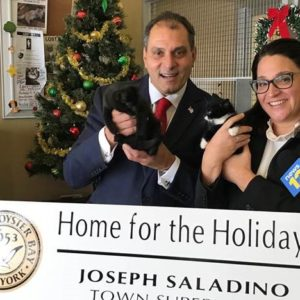 Saladino and Johnson Announce Home for the Holidays Free Pet Adoptions