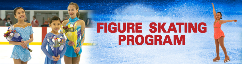 Figure_Skating_Program-main