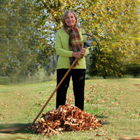 raking leaves icon