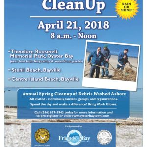 Saladino, Johnson Invite Residents to Oyster Bay Harbor & Beach Cleanup