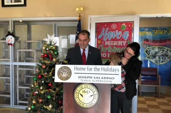 Saladino, Johnson Announce 'Home for the Holidays' Free Cat Adoptions