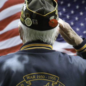 Free Golf for Veterans  Active Duty Military on Veterans Day