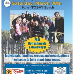 Town Seeks Volunteers for March 30th Dune Day at TOBAY Beach