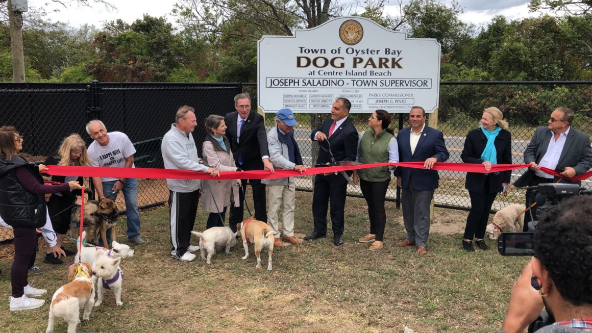 Town Opens North Shore's First-Ever Dog Park